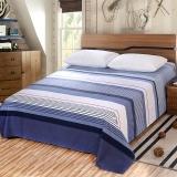 艾薇(AVIVI)床单单件纯棉40支斜纹印花被单加大单人床1.2床150 210(太阳的后裔)