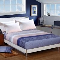 艾薇 床品家纺 双人床笠单件纯棉床垫套防滑1.5米床(艾玛节奏150*200*25)