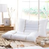 博洋家纺(BEYOND)植物对枕 成人对装枕芯 双人枕头 黄荆子对枕 48*74cm*2
