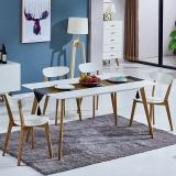 百思宜 北欧现代简约饭桌餐桌长方形桌子洽谈桌 白色 烤漆桌面120cm*80cm(不含椅子)