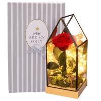 初朵红色永生玫瑰花玻璃花房礼盒彩灯七夕情人节生日礼物纪念日创意礼品送女生女友