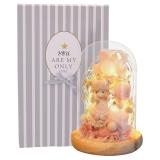 初朵粉色小公主永生玫瑰花玻璃罩礼盒