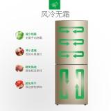 容声(Ronshen) 180升 双门冰箱小型 风冷无霜 静音省电 实惠实用 二级能效 璀璨金 BCD-180WD12D