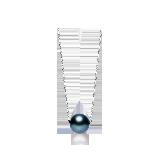法国大溪地黑珍珠 18K白金项链项链