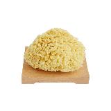地中海天然蜂窩海綿蜂窩海綿不含皂拖