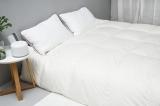 白鹅绒秋冬加厚羽绒被95%白鹅绒220*240cm(灰色)