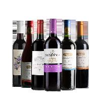 挚爱佳酿 6款组合葡萄酒750毫升*6瓶