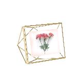 立体菱形相框金色6寸