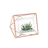 立体菱形相框玫瑰金6寸