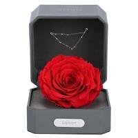 Love Letter 12星座摩羯座进口巨型永生花玫瑰保鲜花礼盒 三八38妇女节礼物送女友生日礼物 女生