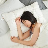 大朴(DAPU)枕芯家纺 50%白鸭羽绒格子面包枕 羽绒羽毛枕头 单只装 48*74cm