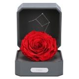 Love Letter 12星座天秤座进口巨型永生花玫瑰保鲜花礼盒新年礼物 情人节 礼物送女友生日表白礼物