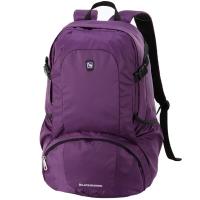 爱华仕(OIWAS)时尚轻薄双肩包 旅行运动双肩背包电脑包男女学生书包 4071紫色