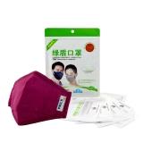 绿盾 抗菌防尘口罩 防霾 防颗粒PM2.5可水洗 女 骑行棉 酒红 均码