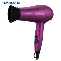 飞科(FLYCO)电吹风机家用FH6618大功率吹风筒负离子 2000W