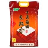 十月稻田 长粒香大米 东北大米 东北香米 5kg