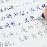 紹澤文化 楷書成人練字帖 學生硬筆鋼筆凹槽21天臨摹練字本 大本豪華視頻版