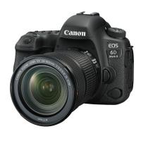 佳能(Canon)EOS 6D Mark II 6D2 单反相机 单反套机 全画幅(EF 24-105mm f/3.5-5.6 IS STM 单反镜头)